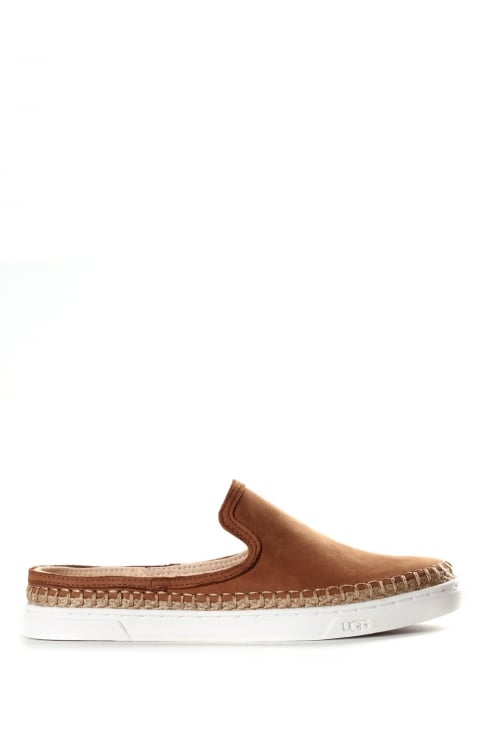Caleel Slip On Women's Trainers Chestnut